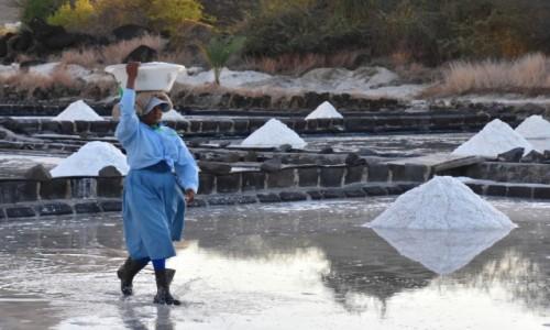 Zdjęcie MAURITIUS / zachodnie wybrzeże / okolice Grande Riviere Noire / Zbieraczka soli
