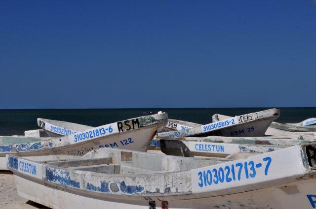 Zdjęcia: Zatoka Celestun, Klimaty zatoki, MEKSYK