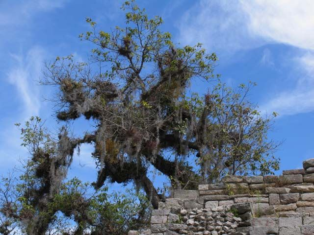 Zdjęcia: okolice Comitan, Chiapas, meksyk09, MEKSYK
