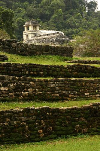 Zdjęcia: Palenque, Chapas, Ruiny Palenque, MEKSYK