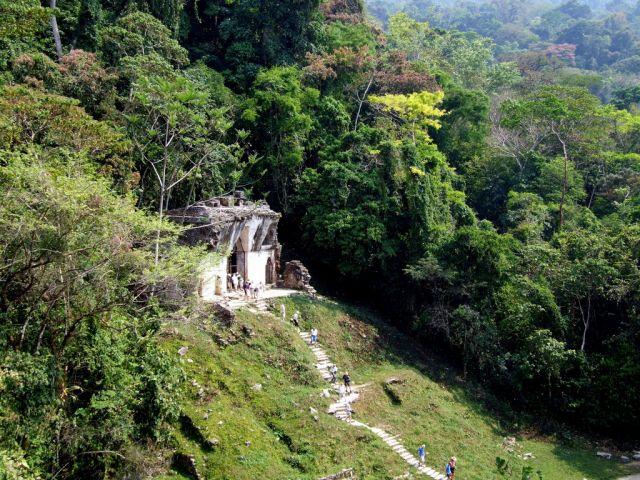 Zdjęcia: Palenque, Chiapas, Świątynie , MEKSYK