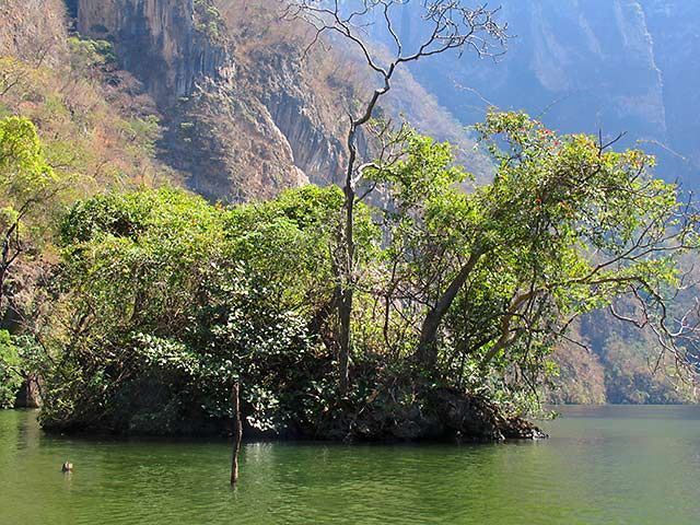 Zdjęcia: Kanion del Sumidero, Chiapas, w kanionie 5, MEKSYK