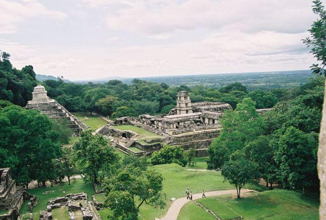 Zdjęcia: rezerwat selwy lokandońskiej, Palenque, MEKSYK