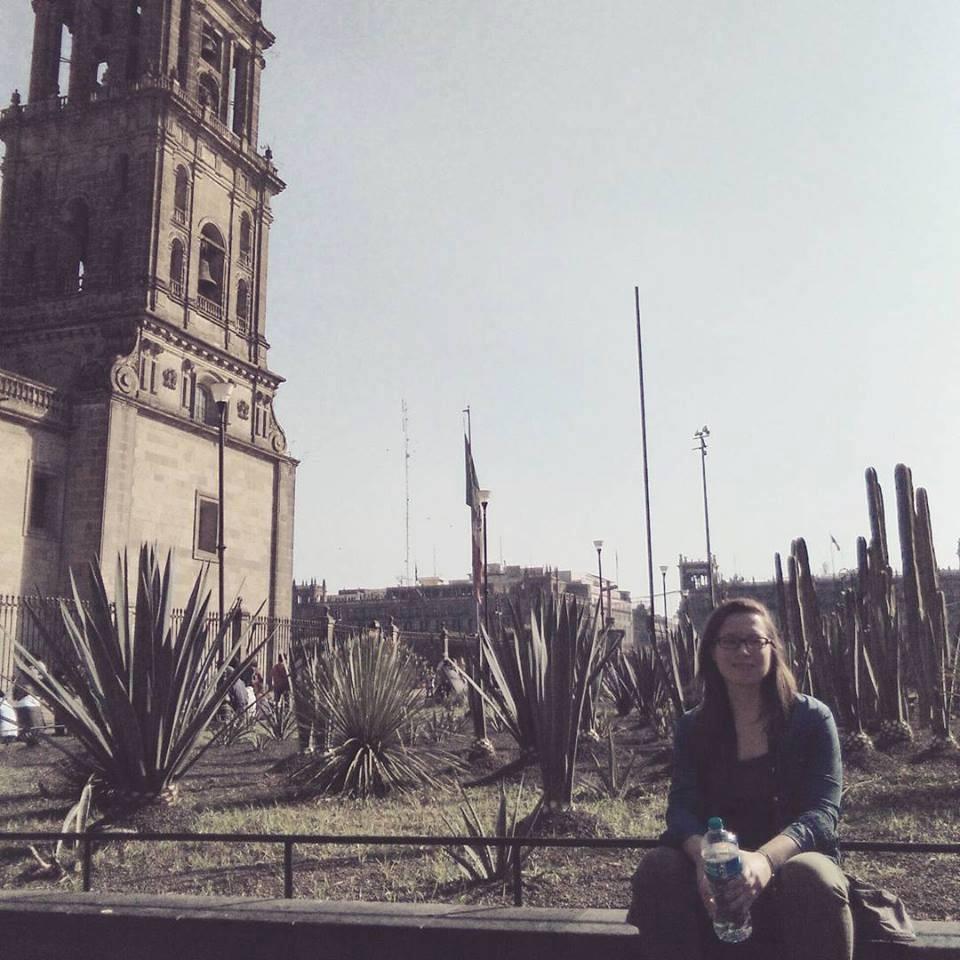Zdjęcia: Mexico City, Mexico City, prof, MEKSYK