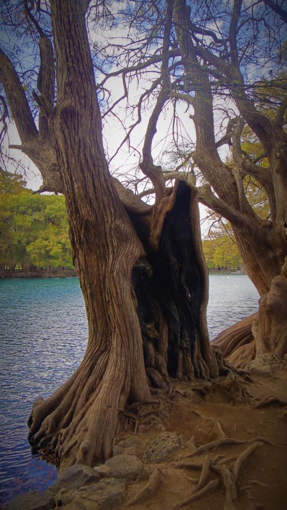 Zdjęcia: Zamora, Michoacan, Jezioro Camecuaro, MEKSYK