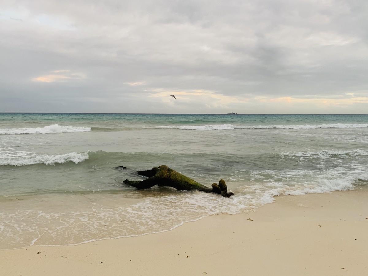 Zdjęcia: Playa del Carmen , Jukatan , Meksykańska plaża, MEKSYK