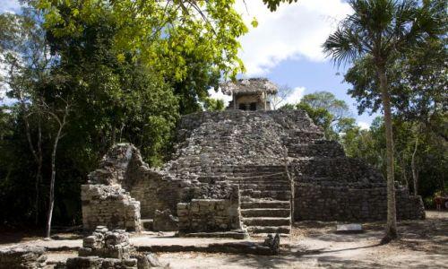 Zdjęcie MEKSYK / Jukatan / Coba / Strefa archeologiczna w COBIE