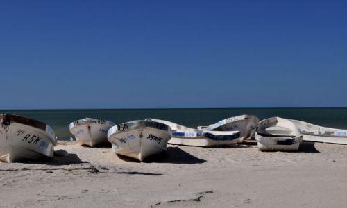 Zdjecie MEKSYK / - / Zatoka Celestun / Klimaty zatoki