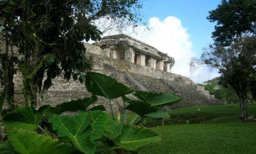 Zdjecie MEKSYK / - / Palenque / Świątynia Inskrypcji