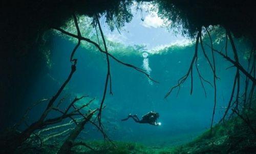 Zdjecie MEKSYK / półwysep Jukatan / Tulum / cenote widok z wody