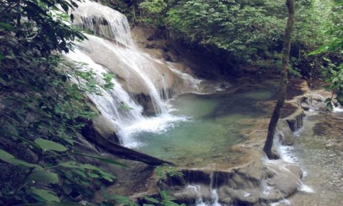 Zdjęcie MEKSYK / Chiapas / Palenque / 02
