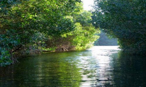 Zdjecie MEKSYK / Jukatan / laguna Celestun / meandry laguny Celestun