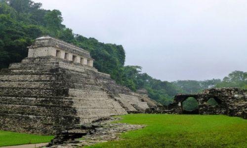 Zdjęcie MEKSYK / Chiapas / Palenque / świątynia wydarta dżungli