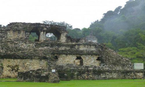 Zdjęcie MEKSYK / Chiapas / Palenque / zamglone ruiny w Palenque