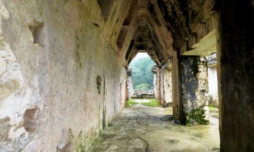 Zdjęcie MEKSYK / Chiapas / Palenque / część Pałacu króla Pakala