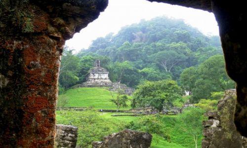 Zdjęcie MEKSYK / Chiapas / Palenque / widok z Pałacu