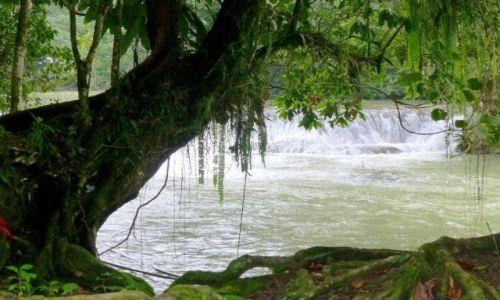 Zdjęcie MEKSYK / Chiapas / Palenque / ciekawy zakątek przy wodospadzie.