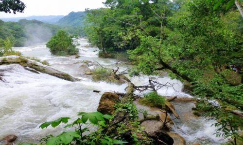 Zdjęcie MEKSYK / Chiapas / Aqua -Azul / z siłą wodospadu w dżungli