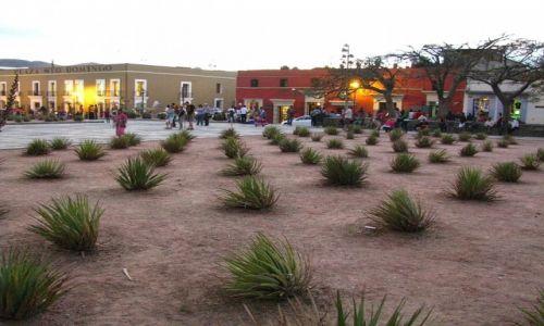 Zdjęcie MEKSYK / stan Oaxaca / Oaxaca / Oaxaca