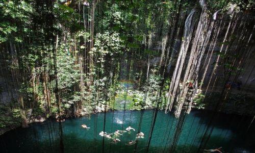 Zdjęcie MEKSYK / Jukatan / Okolice Chichen Itza / Cenote Ik Kil