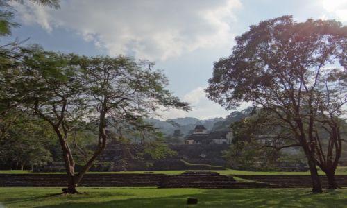 Zdjęcie MEKSYK / Chiapas / Palenque / Park archeologiczny
