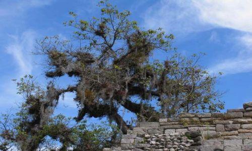 Zdjecie MEKSYK / Chiapas / okolice Comitan / meksyk09