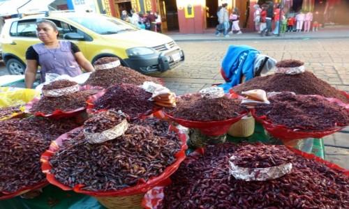 Zdj�cie MEKSYK / Oaxaca / Oaxaca / �wierszczyki sma�one z chilli; chapulines