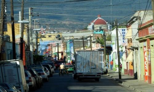 Zdjęcie MEKSYK / Oaxaca / Oaxaca de Juárez / W sieci