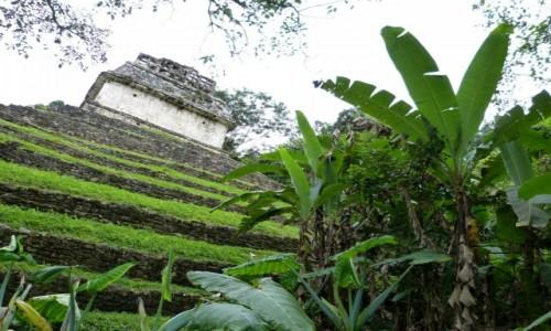 Zdjecie MEKSYK / Chiapas / Palenque / Z innej perspek