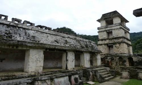 MEKSYK / Chiapas / Palenque / Ruiny kompleksu pa�acowego