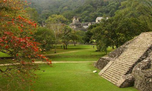Zdjecie MEKSYK / brak / Palenque, Chapas / Ruiny Palenque