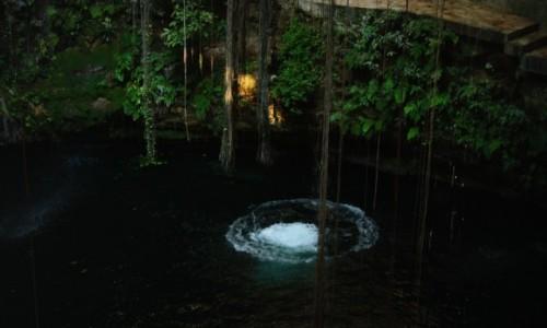 Zdjecie MEKSYK / Jukatan / Chichen Itza / cenote