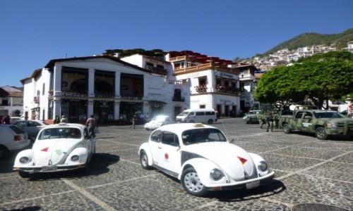 MEKSYK / Guerrero / Taxco / Garbusy w Taxco