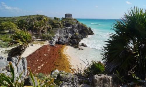 Zdjecie MEKSYK / Jukatan / Tulum / W dawnym porcie Majów