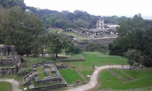 Zdjecie MEKSYK / - / Palenque - zaginione miasto Majów / Palenque - zaginione miasto Majów