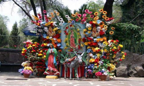 Zdjęcie MEKSYK / Miasto Meksyk / Miasto Meksyk / Guadelupe - pamiątkowe zdjećia
