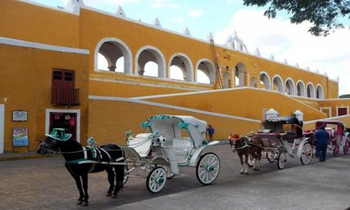 Zdjecie MEKSYK / Jukatan / Izamal / Izamal - żółte budynki i konie w kapeluszach
