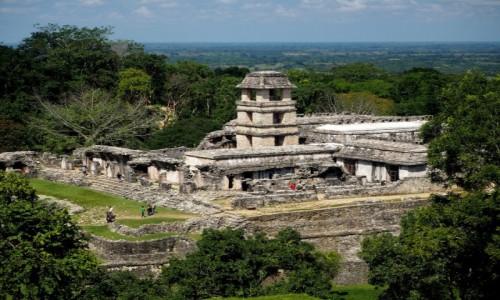 Zdjęcie MEKSYK /  Chiapas / Palenque / Dawne miasto Majów