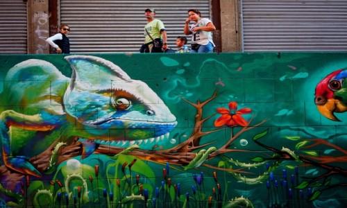 Zdjęcie MEKSYK / miasto Meksyk / miasto Meksyk / Graffiti