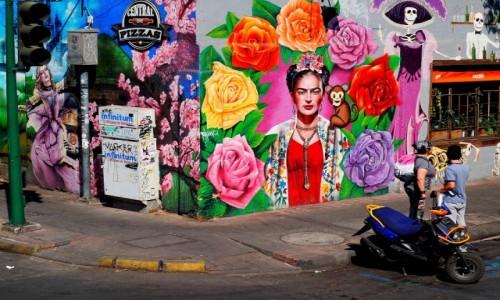 MEKSYK / Mexico City / Mexico City / Mural z Fridą