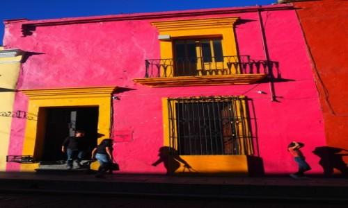 Zdjęcie MEKSYK / Oaxaca / Oaxaca de Juárez / Kolory Meksyku