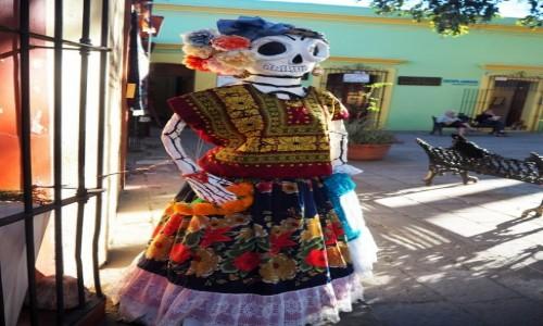 Zdjęcie MEKSYK / Oaxaca / Oaxaca de Juárez / Wizytówka sklepu