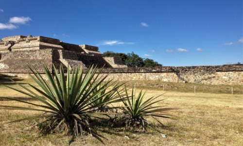 Zdjecie MEKSYK / Oaxaca / Monte Alban / Monte Alban