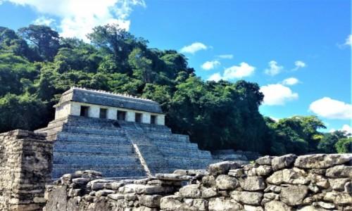Zdjecie MEKSYK / Chiapas / Palenque / Ruiny Majów