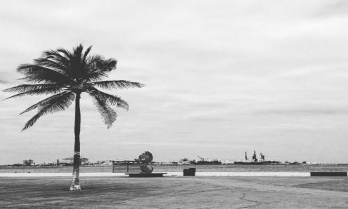 MEKSYK / Veracruz / Puerto de Veracruz / Plaża w Veracruz