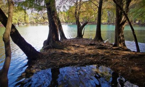 Zdjęcie MEKSYK / Michoacan / Zamora / Jezioro Camecuaro
