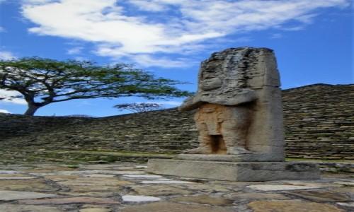 Zdjecie MEKSYK / Chiapas / Tonina / Tonina - strefa archeologiczna Majów