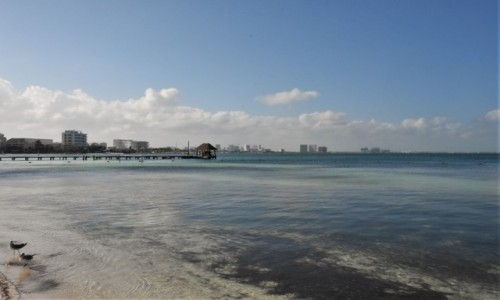 Zdjęcie MEKSYK / Jukatan / Cancun / Morze