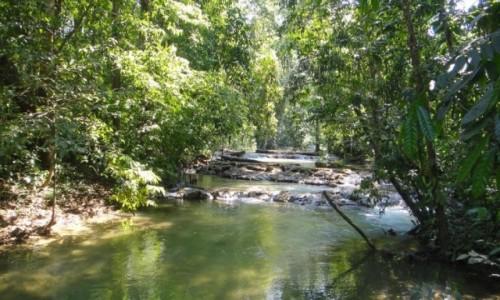 Zdjecie MEKSYK / Chiapas / Lacandona / Lacandona - dżungla w Meksyku