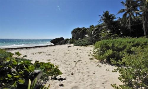 Zdjecie MEKSYK / Jukatan / Tulum / Tulum, plaża